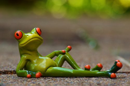 frog-947770_1920